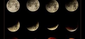 Eclissi di Luna vista da Acquamorta  con gli scatti del fotografo Sandro Caputo