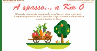 A spasso… a Km 0 (XI edizione di Malazè). Agriturismo Don Salvatore e azienda vitivinicola Cantine del Mare