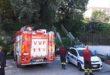 Vigili del Fuoco alla scuola Torregaveta  per probabile caduta di una quercia da un terreno privato.