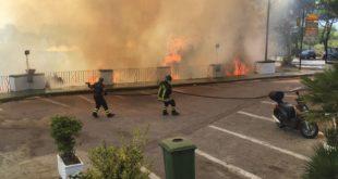 Solo fumo e cenere- Nuove immagini e video dell'Incendio a Montegrillo.