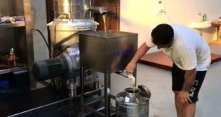 L'estrazione dell'olio delle olive flegree de LE CANTINE DEL MARE. Video