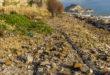 Inquinamento Torrefumo, venerdì 21 se ne discuterà in consiglio comunale. La dichiarazione del sindaco