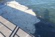 Chiazze galleggianti in mare  esclusi guasti nel Comune di Monte di Procida.
