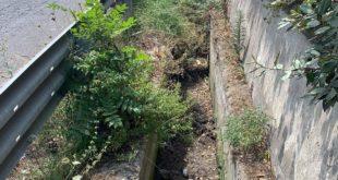 Via Panoramica. Canali otturati e sporchi e sversamenti illegali.