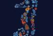 Coco: il tema del Carnevale 2020 di Vivilestate