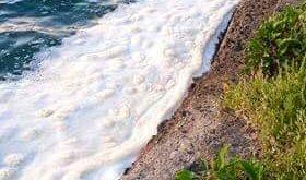 Bacoli. Scarico illegale nel lago Miseno. Scoperto il responsabile.