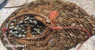200 kg di vongole sequestrate nel Lago Fusaro. Denunciate 5 persone.