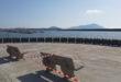 La nuova piazza sul porto di Acquamorta.Foto