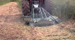 Monte di Procida. Controlli pulizia fondi agricoli non coltivati