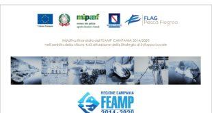 Emergenza sanitaria covid-19: la proposta del Flag Pesca Flegrea per la mitilicoltura